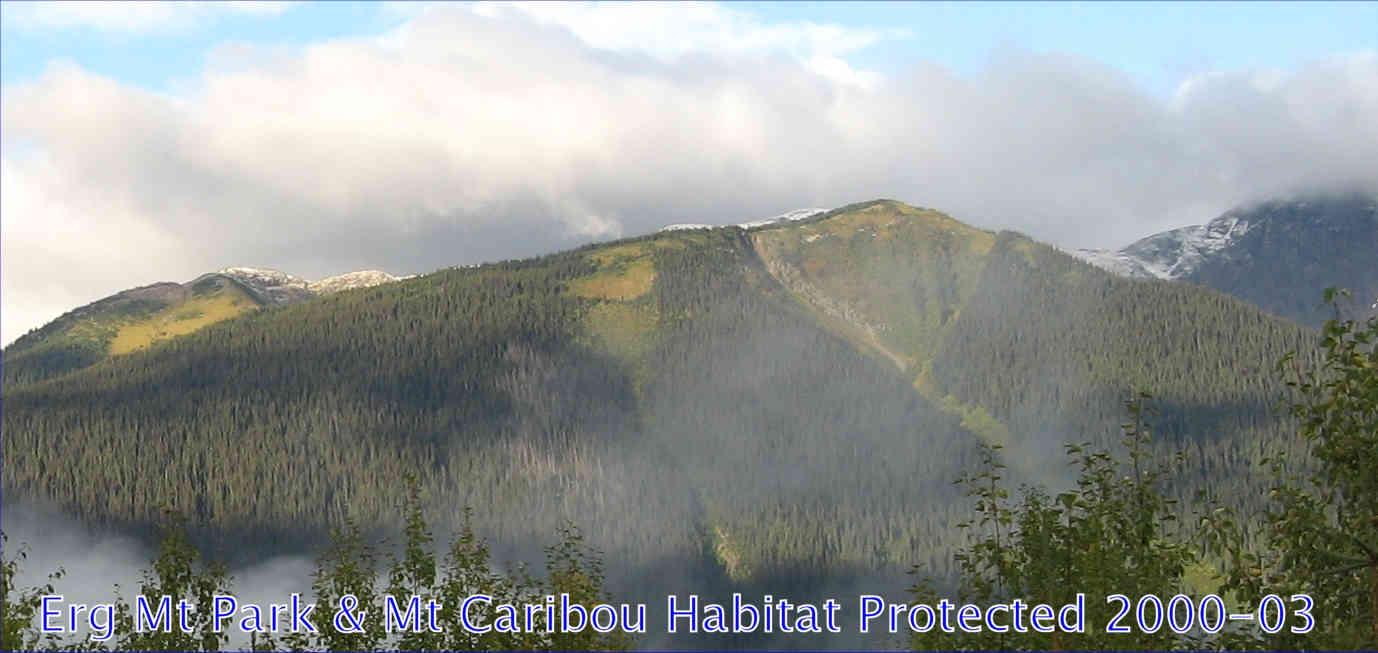 Erg Park, MtCaribou Habitat Protected 00-03 (60 K)