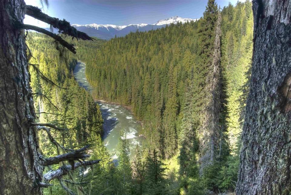 Lower Goat River