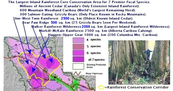 Rainforest Core Conservation Area